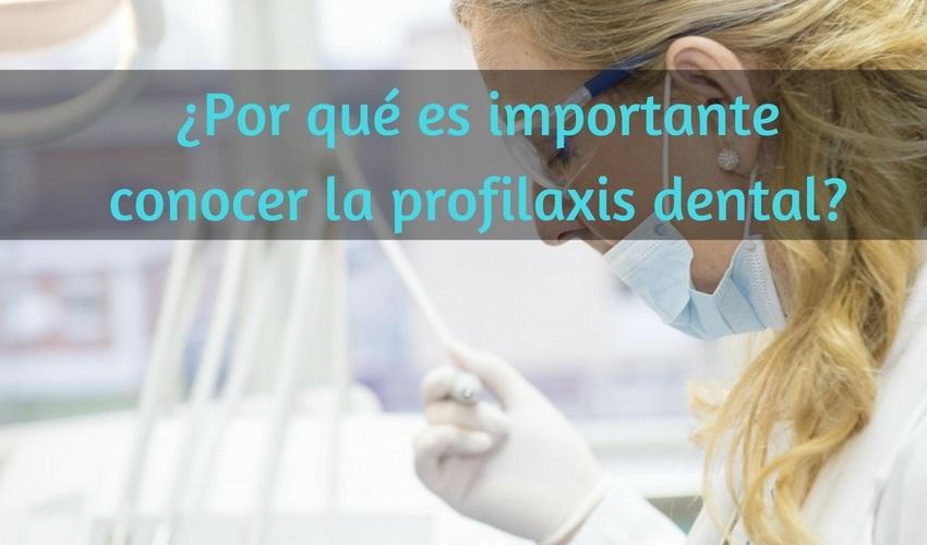 Perché è importante conoscere la profilassi dentale?